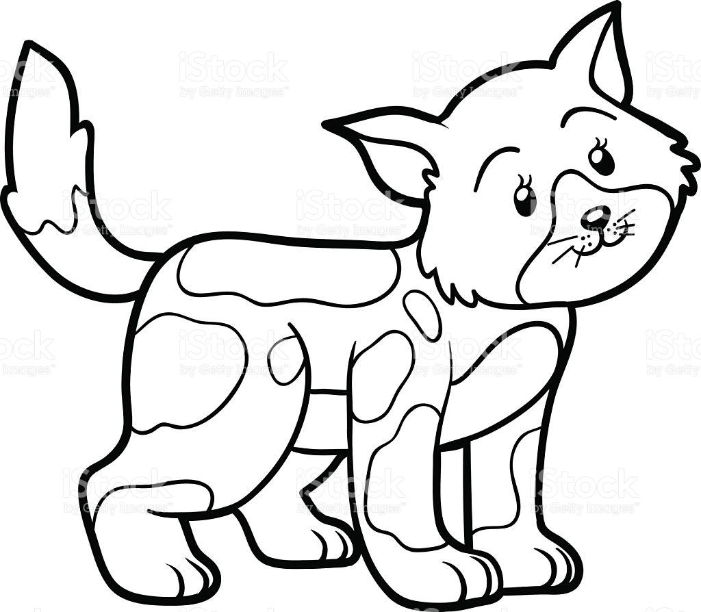 Gatos para colorear ❺❺ 【DIBUJOS para descargar y Pintar】