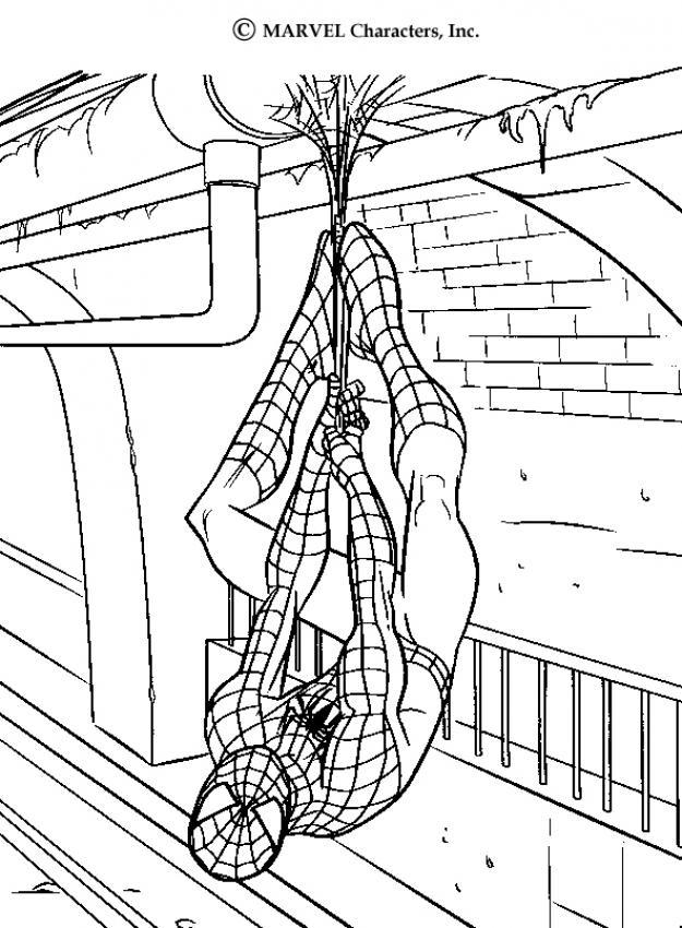 Spiderman para colorear ❺❺ 【DIBUJOS para descargar y Pintar】