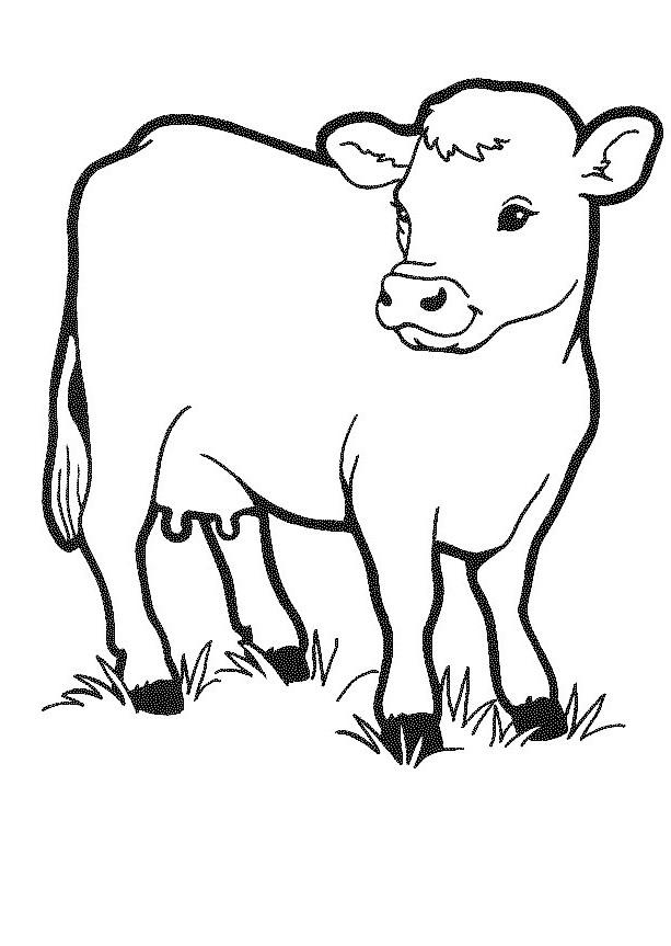 Vacas Para Colorear 𝐃𝐢𝐛𝐮𝐣𝐨𝐬 𝐩𝐚𝐫𝐚 𝐢𝐦𝐩𝐫𝐢𝐦𝐢𝐫 𝐲